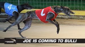 Here Comes Joe all the way to Bulli