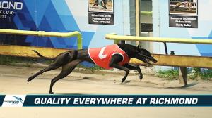 Quality to rise to the top again at Richmond
