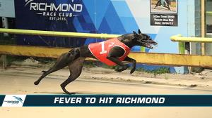 Fever set to hit Richmond chasing number 8