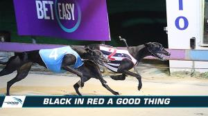 Black back in the red and set to win at Bulli